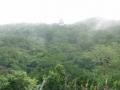 Tikal_Panorama_from_top_of_Pyramid